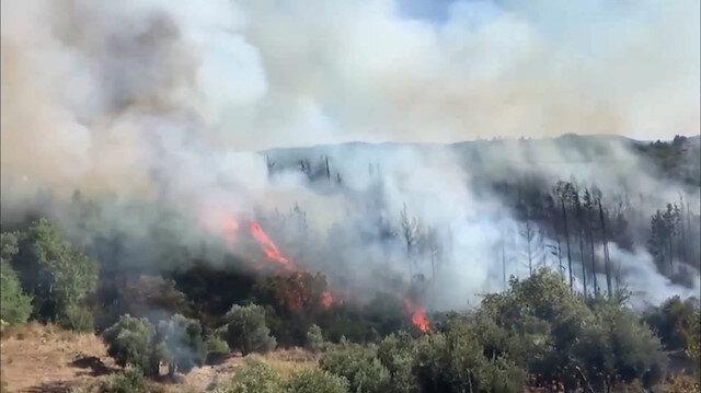 Antalya'da korkutan yangın: Tarım arazisinde başlayıp ormanlık alana sıçradı