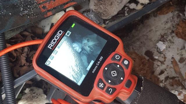 Çatıdaki boşluktan kanala düşen yavru kediyi itfaiye ekipleri kurtardı