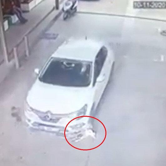 Otomobilin 2 köpeği ezdiği an kamerada