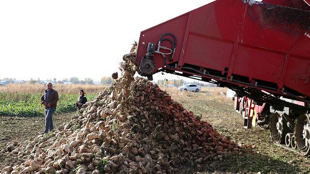 Albayrak Grubu'nun sağladığı teşvikler Doğu Anadolu'daki pancar üreticilerini sevindirdi
