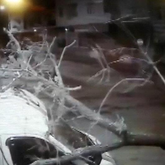 Kamyonun çarptığı ağaç minibüsün üzerine düştü