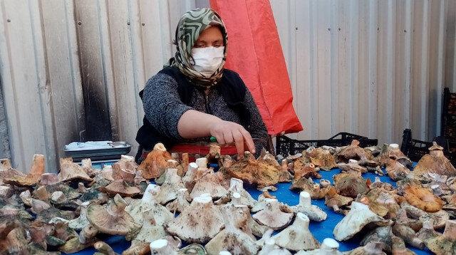 Havalar kurak gidince mantar fiyatları yüzde 100 zamlandı