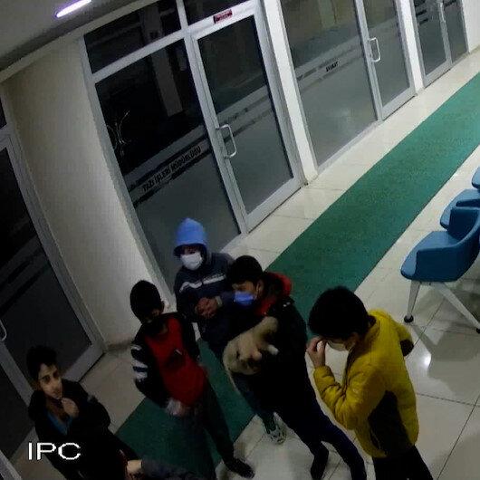 Sivasta küçük çocuklardan alkışlanacak hareket: Yaralı köpek için verdikleri mücadele kamerada