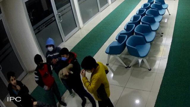 Sivas'ta küçük çocuklardan alkışlanacak hareket: Yaralı köpek için verdikleri mücadele kamerada
