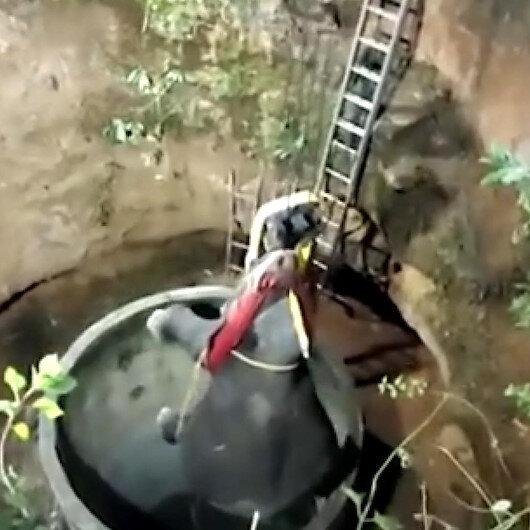 Hindistanda 15 metrelik kuyuya düşen yavru fil vinç yardımıyla çıkartıldı