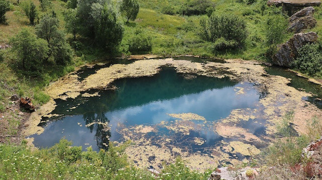 Resmi Gazete'de yayımlandı: Nitelikli doğal koruma alanı ilan edilen doğa harikası göl ve şelale tescillendi