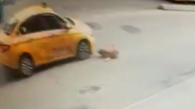 Pendik'te vicdansız taksicinin köpeğe çarpıp kaçtığı anlar kamerada