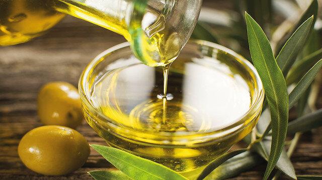 Zeytin yaprağının şifa kaynağı olduğunu biliyor muyuz?