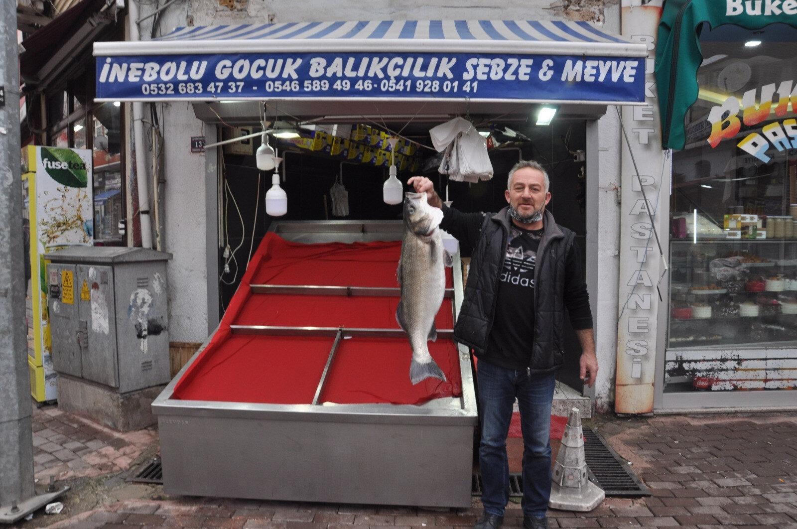 Bir metre 35 santimetre uzunluğunda 14 kilogram ağırlığında levrek, balıkçı tezgahında sergileniyor.