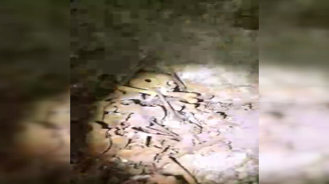 Erbaa'da tarlasını sürerken Roma dönemine ait toplu mezar buldu