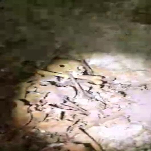 Erbaada tarlasını sürerken Roma dönemine ait toplu mezar buldu