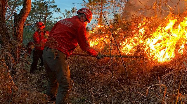 Doğu Karadeniz'de, 4 ilde, 23 noktada yangın: Ekipler müdahale ediyor