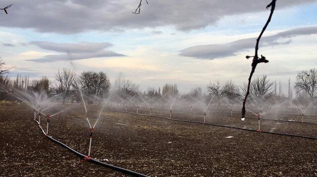 """Türkiye'nin """"tahıl ambarında"""" kuraklık nedeniyle çiftçiler sulamaya kış ortasında başladı"""