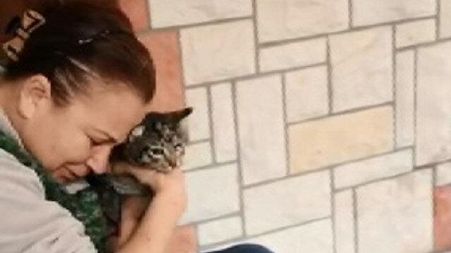 25 kedisi zehirlendi: 17'si telef oldu