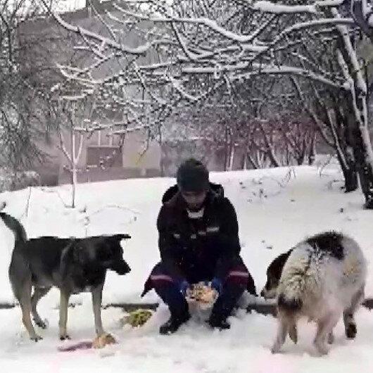 Ümraniyede temizlik görevlisinden iç ısıtan davranış: öğle yemeği kumanyasını sokaktaki hayvanlarla paylaştı