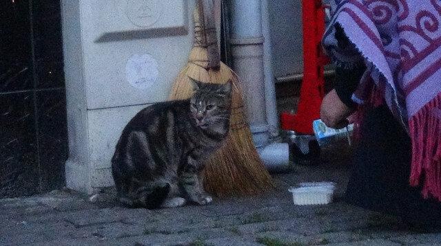 Bursa'da soğuk havada iç ısıtan görüntü: Marketten aldığı sütü aç kalan kediye içirdi