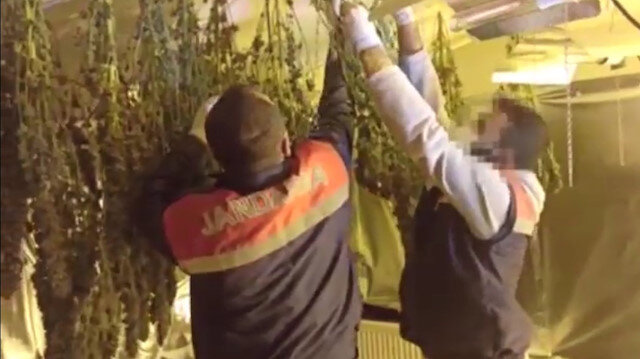 Avcılar'da uyuşturucu serasına dönüştürülen terasa baskın anları kamerada