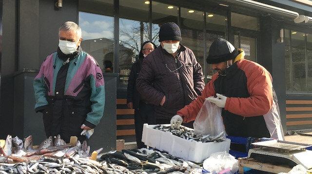 Hamsinin fiyatı düştü balıkçıdan güldüren yorum geldi: Daha önce balıklar şoktaydı şimdi insanlar şoka girdi