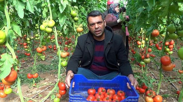 Tarla ile market arasındaki fiyat farkı çiftçiyi çileden çıkardı: Bu aradaki farkı kim yiyor