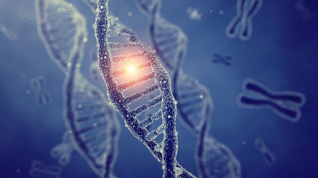 Koronavirüste mutasyon zamanında tespit edilecek