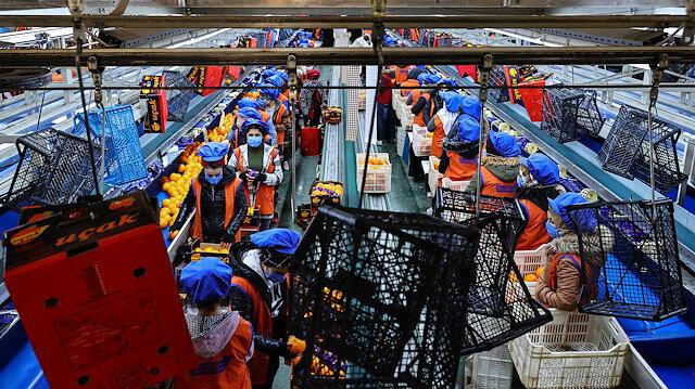 Koronavirüsün de etkisiyle portakal ihracatı yüzde 41 arttı