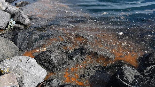 Marmara Denizi'ndeki deniz salyası balıkçıları vurdu: Ağ atamıyorlar