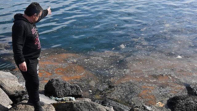 Tekirdağlı balıkçıları paydos ettiren 'deniz salyası'nın nedeni ortaya çıktı