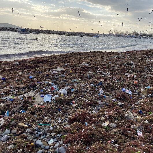 Kadıköy Suadiye Sahilindeki çöpler kıyıya vurdu