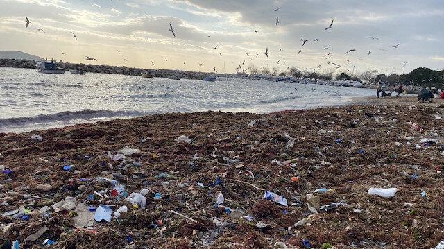 Kadıköy Suadiye Sahili'ndeki çöpler kıyıya vurdu