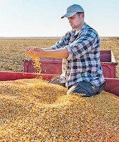 Sözleşmeli tarım fahiş fiyatı engeller