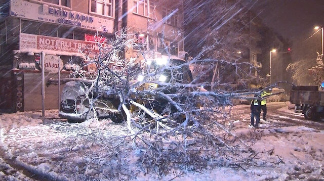 Kağıthane'de yoğun kar yağışı sonrası ağaçlar devrildi araçlar zarar gördü