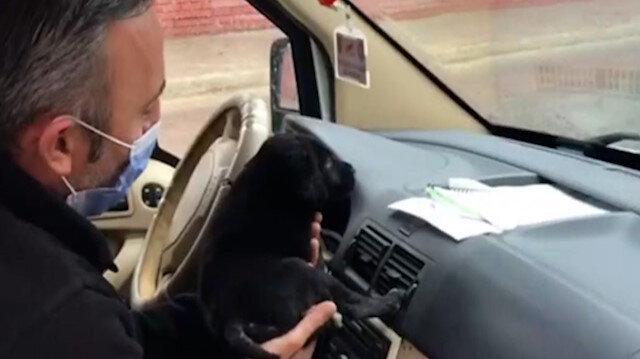 Sakarya'da polis üşüyen köpek yavrusunu ekip otosunda ısıttı