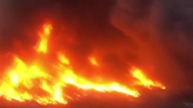 Manisa'da korkunç yangın!