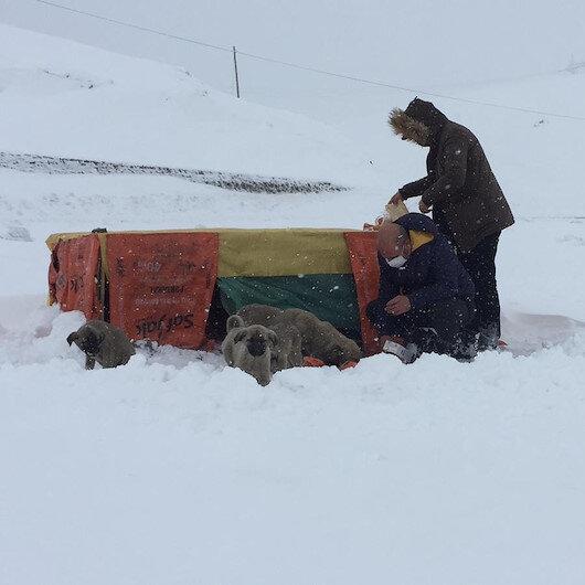 Bingölde insanlık ölmemiş dedirten görüntü: Donmak üzere buldukları yavru köpekleri elleriyle besliyorlar