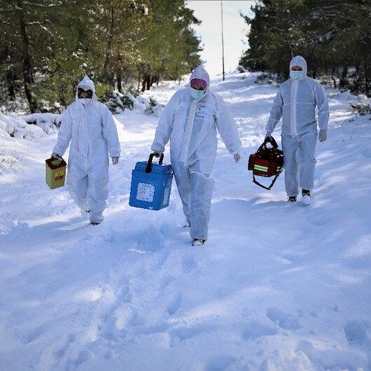 Samsunda aşı ekipleri barajları ve karla kaplı dağlara geçerek yaşlı ailelere ulaşıyor
