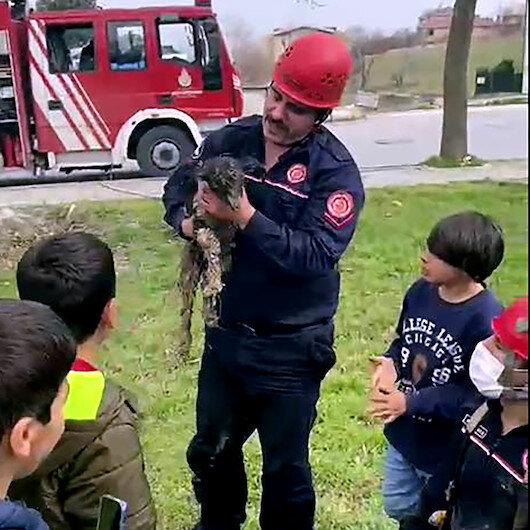 Avcılarda çukura düşen oğlak, çocukların ihbarıyla kurtarıldı