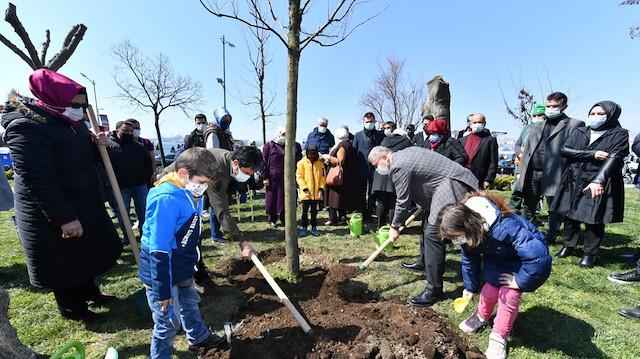 Üsküdar'da sahilde izinsiz kesilen ağaçların yerine yenileri dikildi