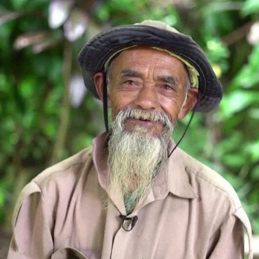 70 yaşındaki Javanın delisi tek başına 11 bin ağaç dikti