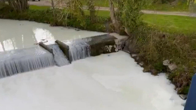 Nehirden oluk oluk süt aktı: Görenler şaşkına döndü