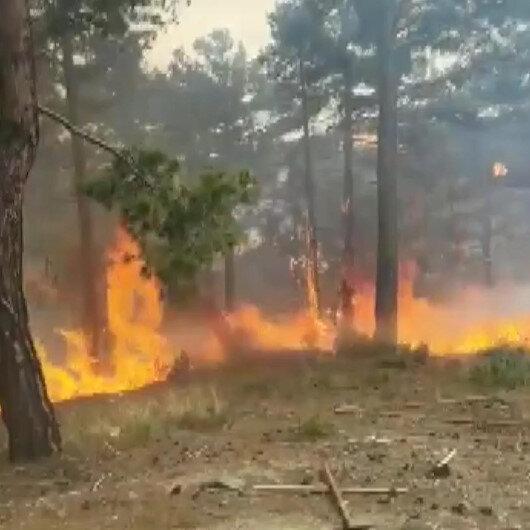 Denizlide orman yangını: 4 hektarlık alan zarar gördü
