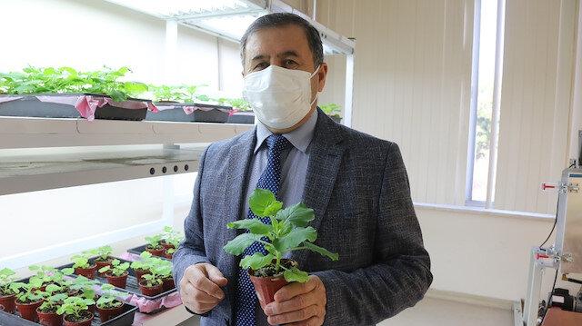 Akdeniz Üniversitesi'nden heyecanlandıran haber: Koronavirüse karşı ilaç ve aşı adayı geliştirildi