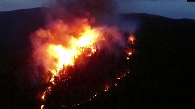 Muğla'daki iki orman yangınına yönelik soruşturma başlatıldı