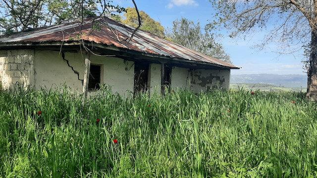 Tek katlı köy evinden Aile ve Sosyal Hizmetler Bakanlığına: Derya Yanık'ın ataması memleketinde sevinçle karşılandı