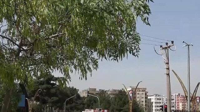 Mardin'de 82 saatlik kısıtlamanın ardından cadde ve sokaklarda hareketlilik başladı