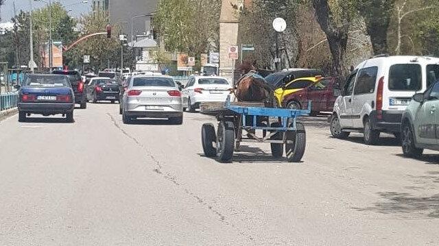 Erzurum'da başıboş at trafikte tehlike saçtı