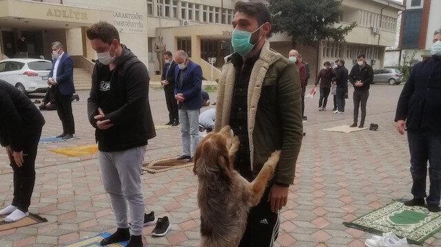 Beslediği sokak köpeği namazda da yanından ayrılmadı