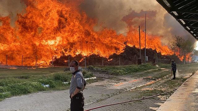 Afyonkarahisar'da biyoenerji tesisinde yangın paniği: Alevler metrelerce yükseldi