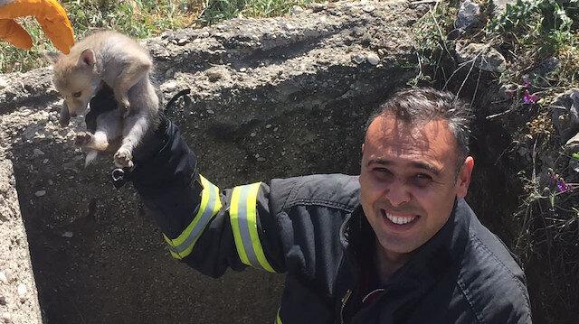 Rögara düşen tilki yavrularını itfaiye ekipleri kurtardı