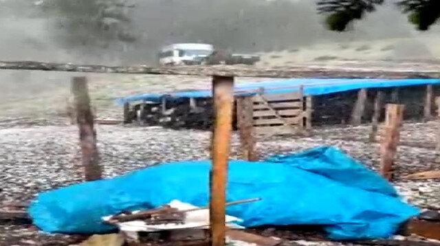 Adana'da ceviz büyüklüğünde dolu yağışı: Her yer beyaza büründü