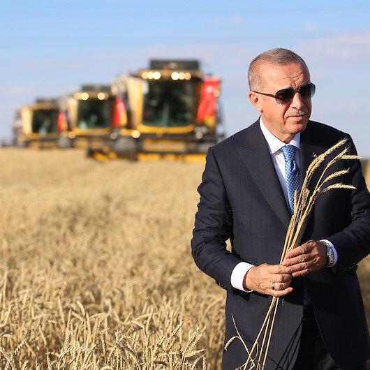 Aşkınan Koşan Yorulmaz: Cumhurbaşkanı Erdoğan'ın bir yılını anlatan kitap hazırlandı